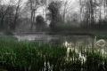03 Another Misty River Morning_Mike Brankin