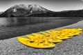 01 Yellow Canoes_David Eckland