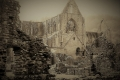 Vanessa Lacey_Abbey ruins