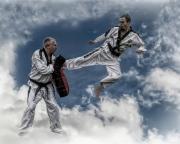 Fantasy-taekwondo_Steve-Bailey