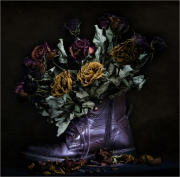 Fading-roses_Steve-Bailey