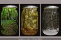 Steve Bailey_Seasons in a jar